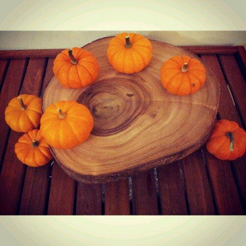 Baby pumpkins, staging, recipe night, pumpkin recipe